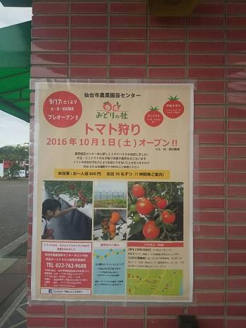 12日・仙台市農業園芸センターでトマト狩り!